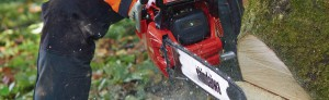 Shindaiwa. Chainsaws, Blowers, Brushcutters, Hedgetrimmers. Sprayers and loads more.